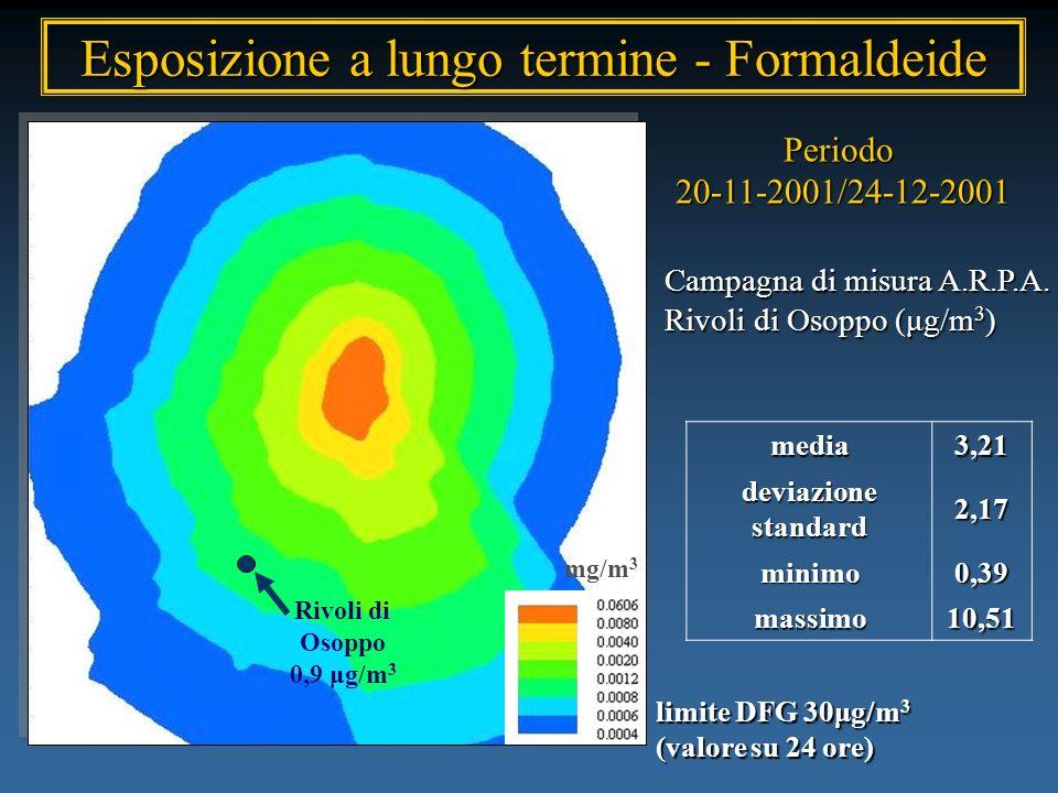 Esposizione a lungo termine - Formaldeide