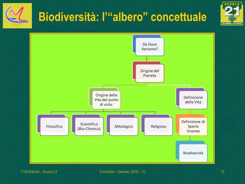 Biodiversità: l' albero concettuale