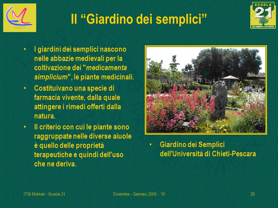 Itis lst ettore molinari milano ppt scaricare - Il giardino dei semplici ...