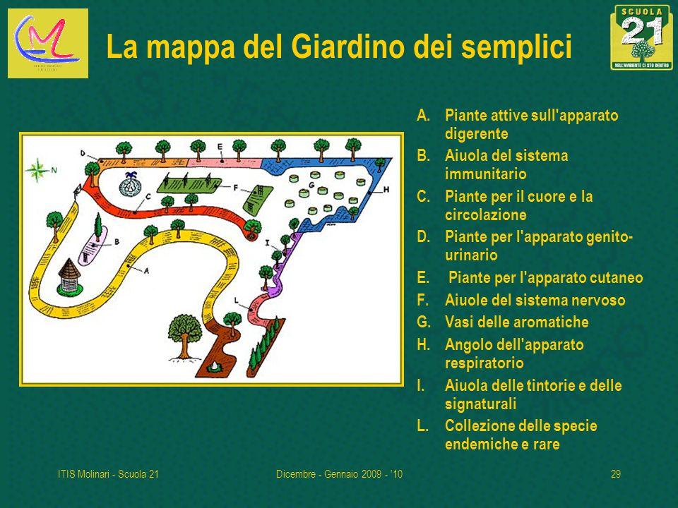 La mappa del Giardino dei semplici
