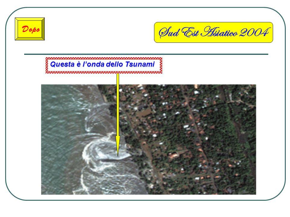 Sud Est Asiatico 2004 Dopo Questa è l'onda dello Tsunami