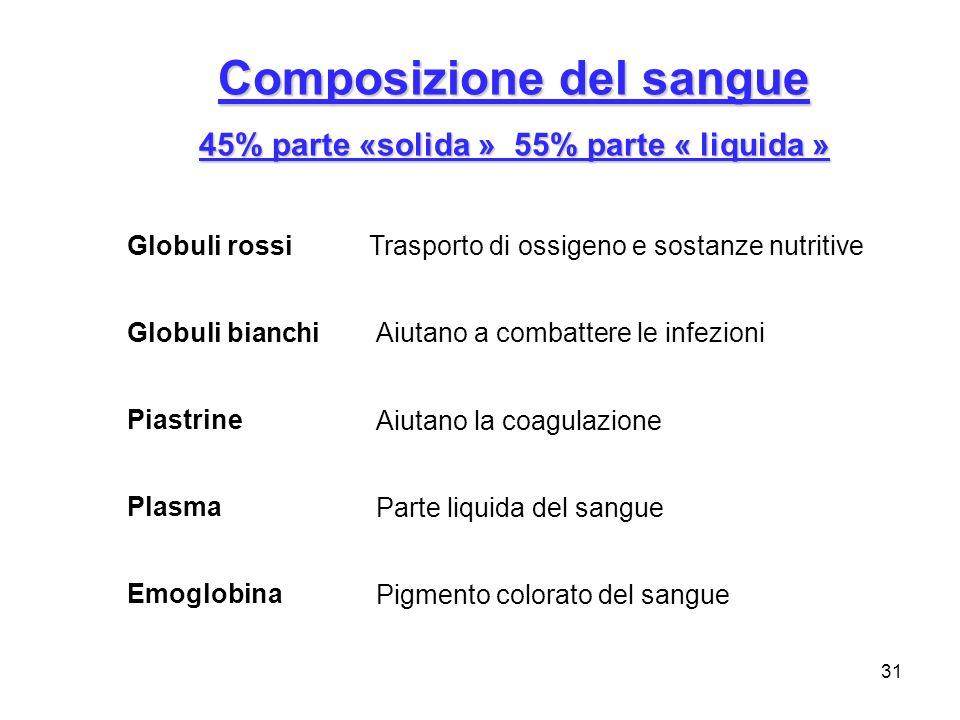 Composizione del sangue 45% parte «solida » 55% parte « liquida »
