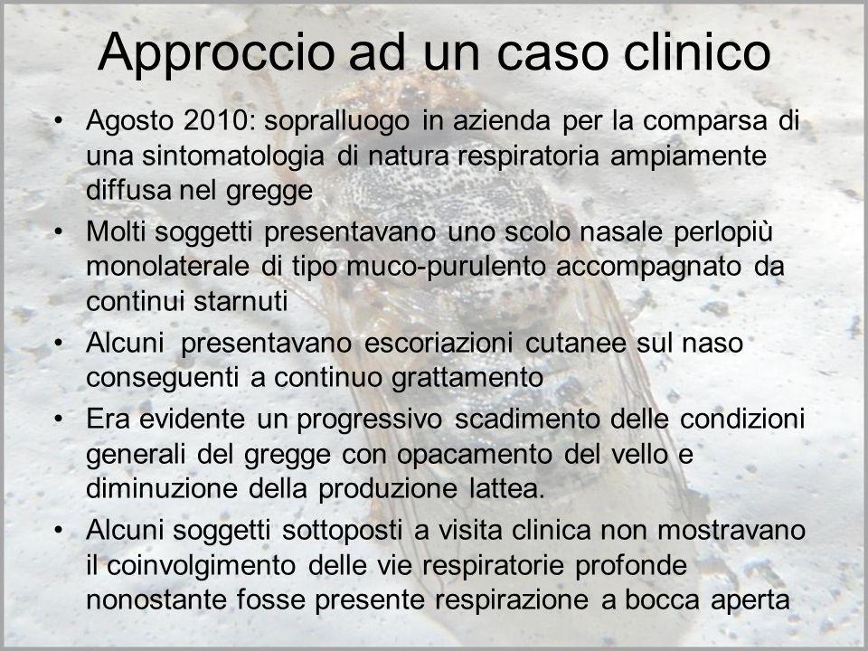 Approccio ad un caso clinico