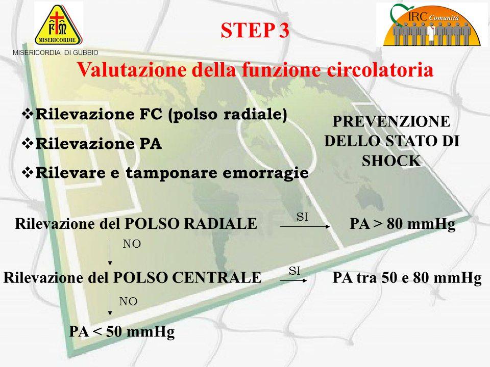 STEP 3 Valutazione della funzione circolatoria