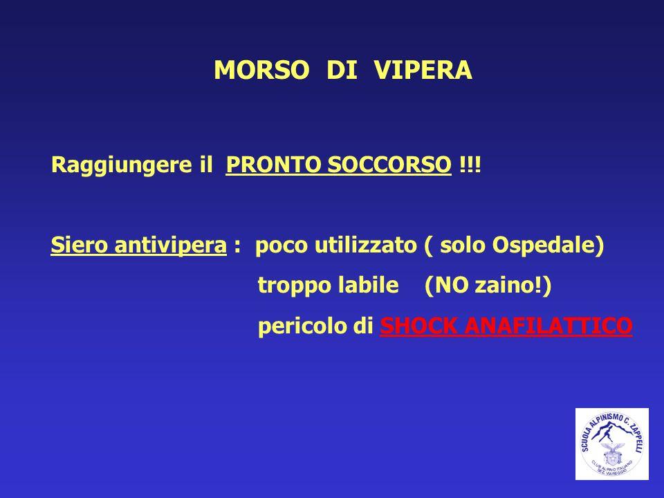 MORSO DI VIPERA Raggiungere il PRONTO SOCCORSO !!!