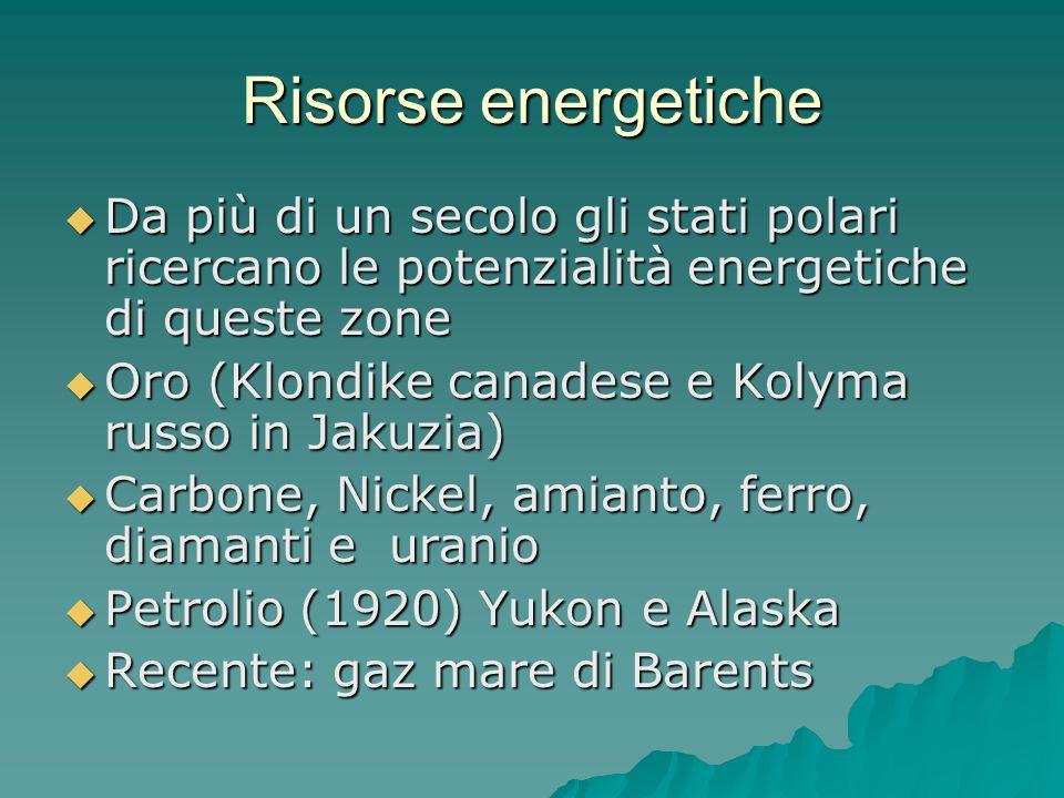 Risorse energetiche Da più di un secolo gli stati polari ricercano le potenzialità energetiche di queste zone.