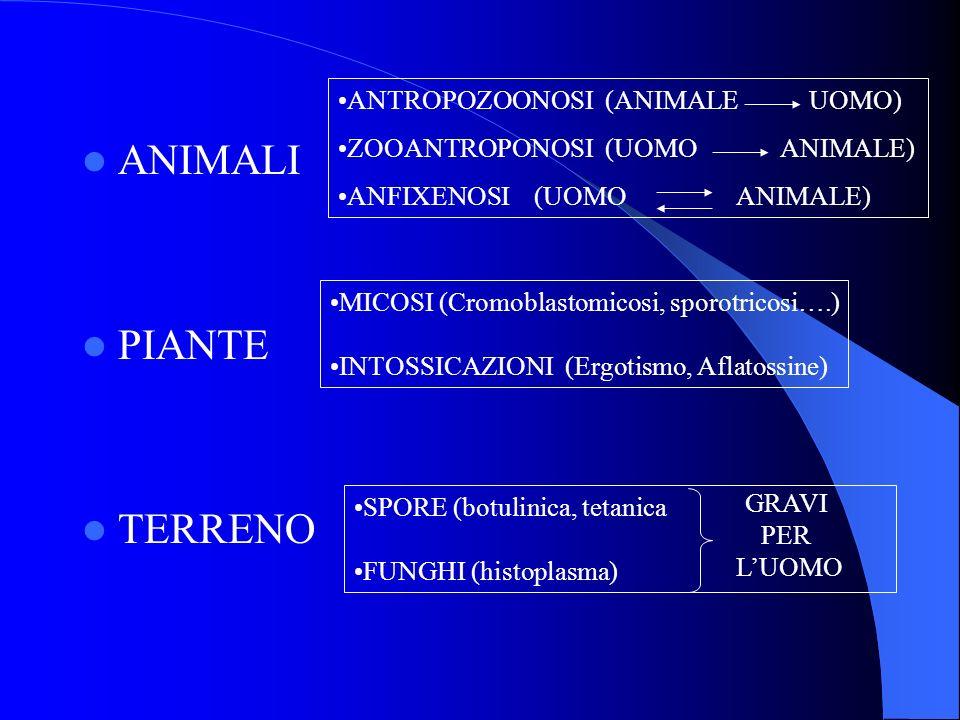ANIMALI PIANTE TERRENO ANTROPOZOONOSI (ANIMALE UOMO)