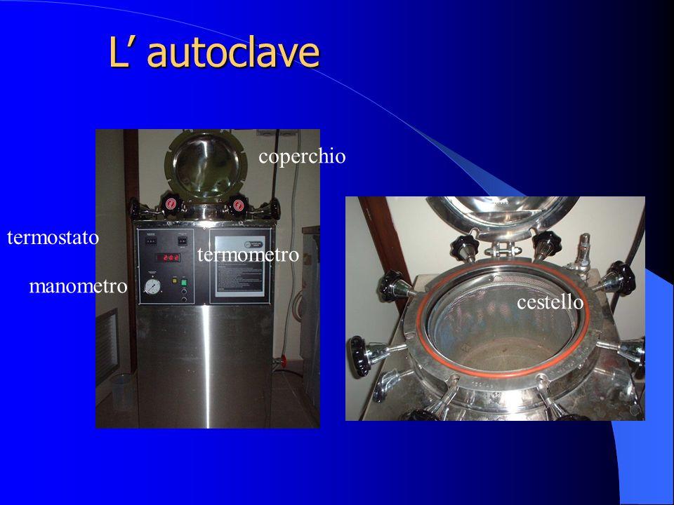 L' autoclave coperchio termostato termometro manometro cestello
