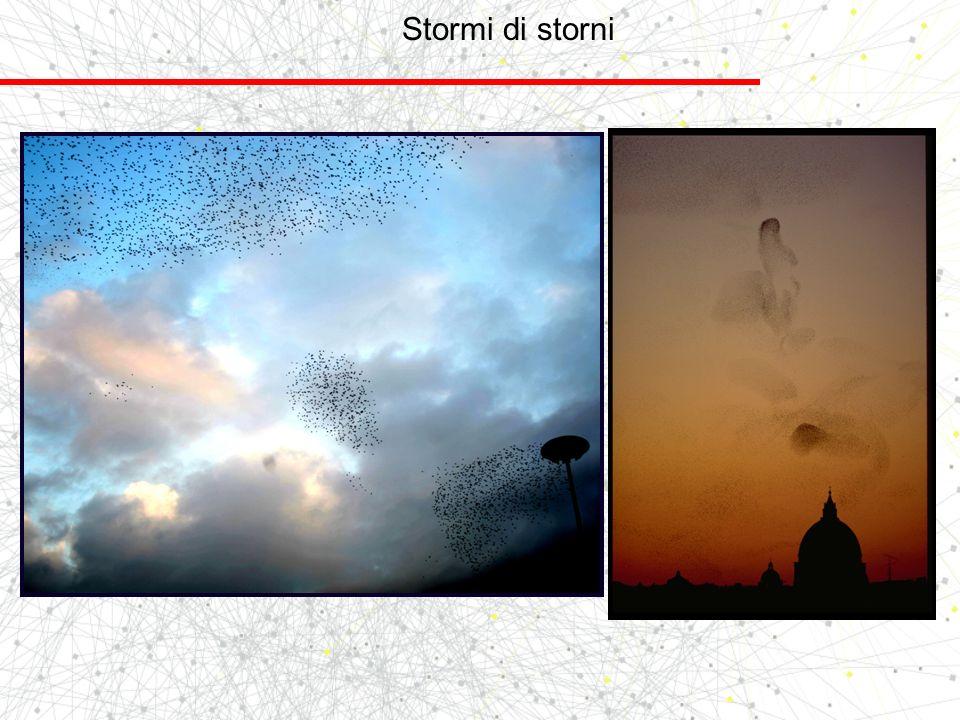 Stormi di storni