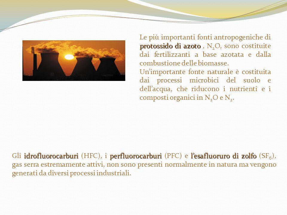 Le più importanti fonti antropogeniche di protossido di azoto , N2O, sono costituite dai fertilizzanti a base azotata e dalla combustione delle biomasse.