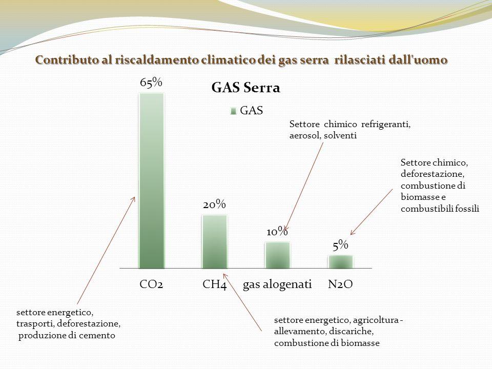Contributo al riscaldamento climatico dei gas serra rilasciati dall uomo