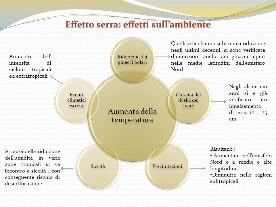 Effetto serra: effetti sull'ambiente