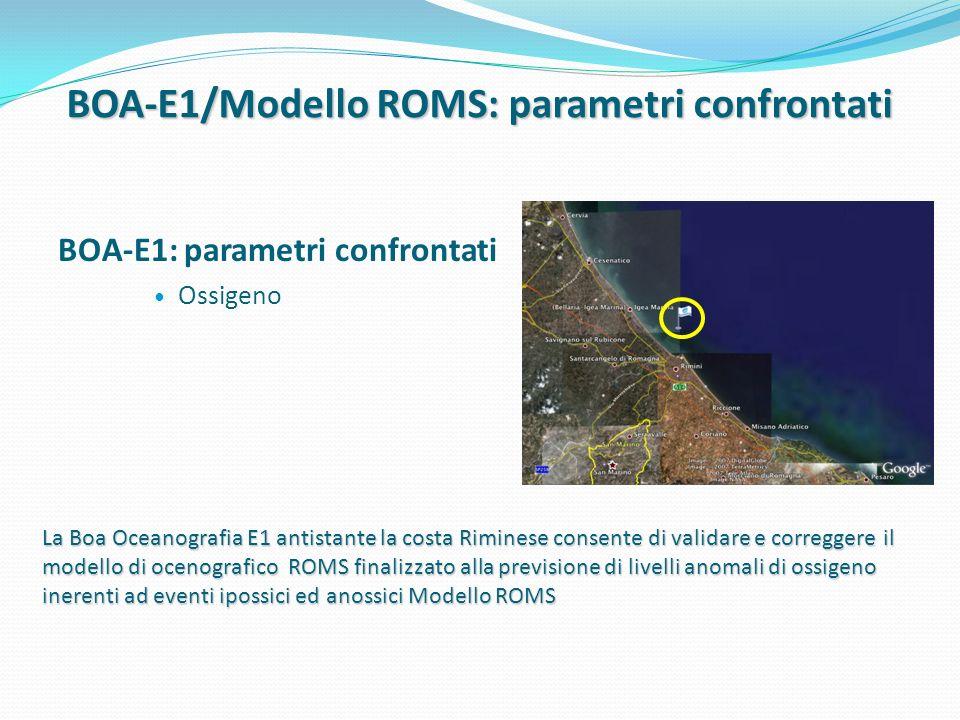 BOA-E1/Modello ROMS: parametri confrontati