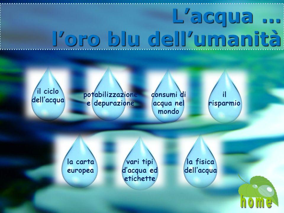 L'acqua … l'oro blu dell'umanità