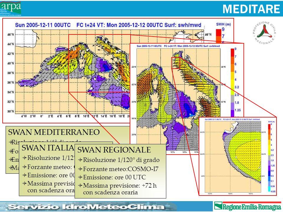 MEDITARE SWAN MEDITERRANEO SWAN ITALIA SWAN REGIONALE