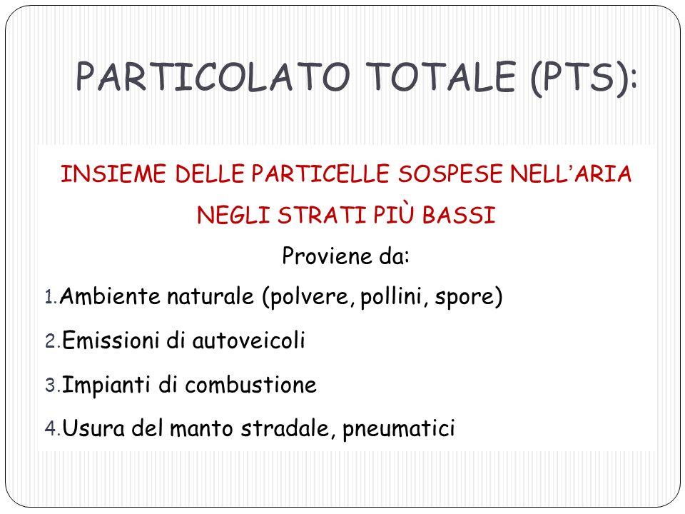 PARTICOLATO TOTALE (PTS):