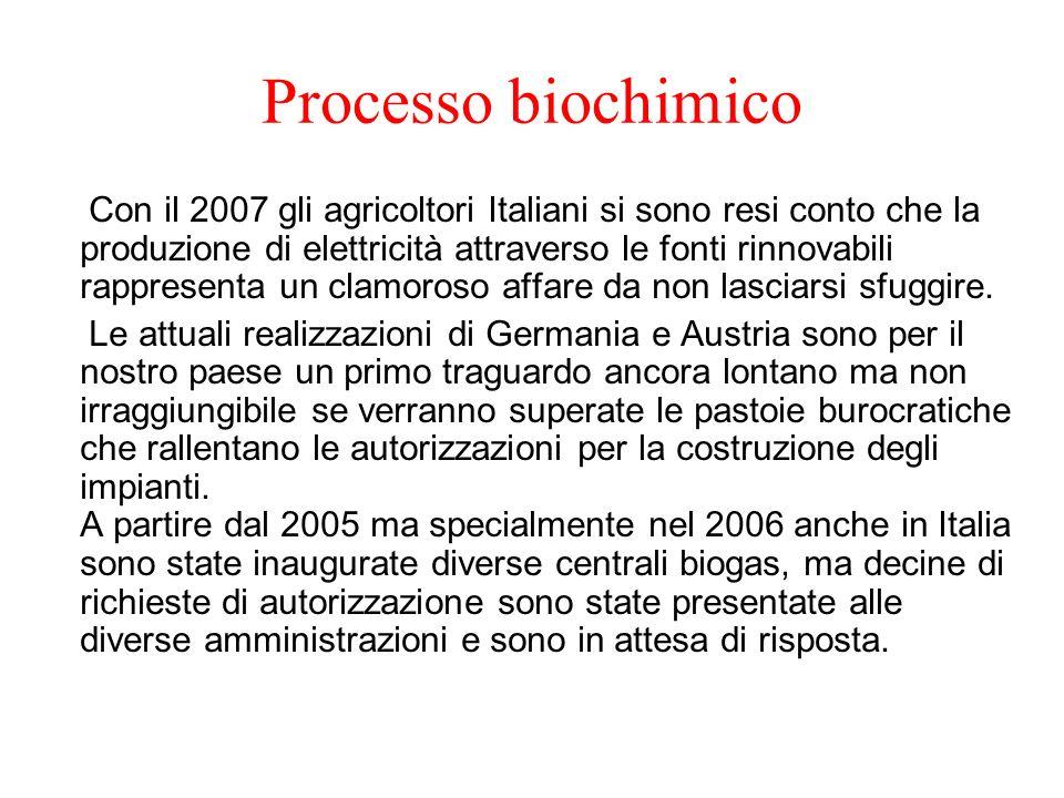 Processo biochimico