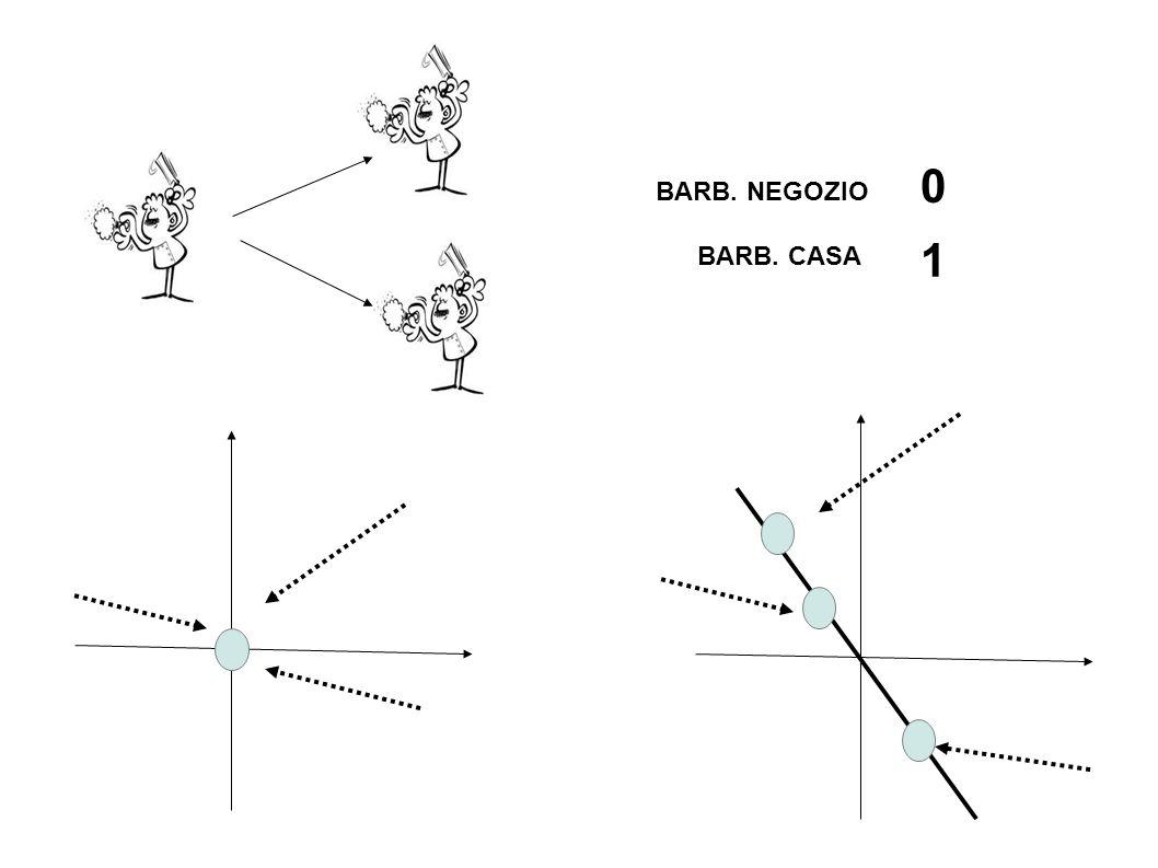 BARB. NEGOZIO 1 BARB. CASA