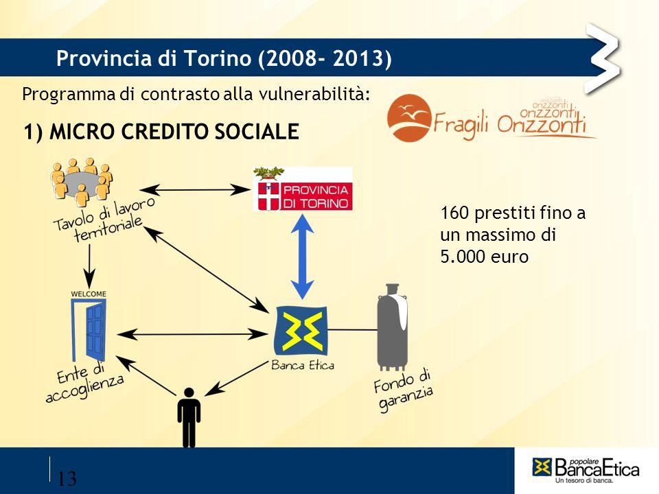 Provincia di Torino (2008- 2013)