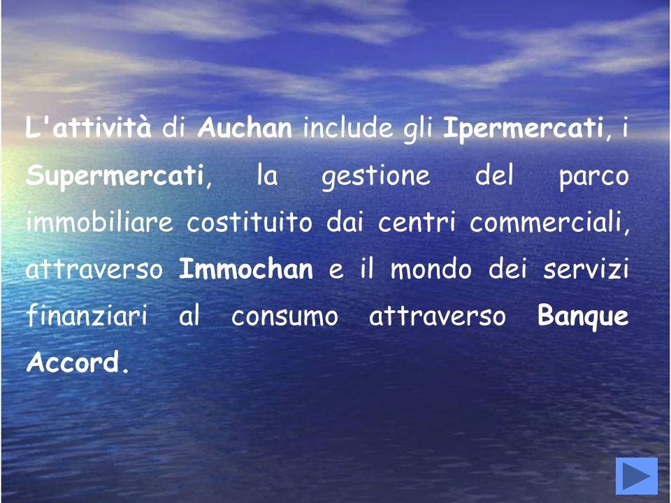 L attività di Auchan include gli Ipermercati, i Supermercati, la gestione del parco immobiliare costituito dai centri commerciali, attraverso Immochan e il mondo dei servizi finanziari al consumo attraverso Banque Accord.