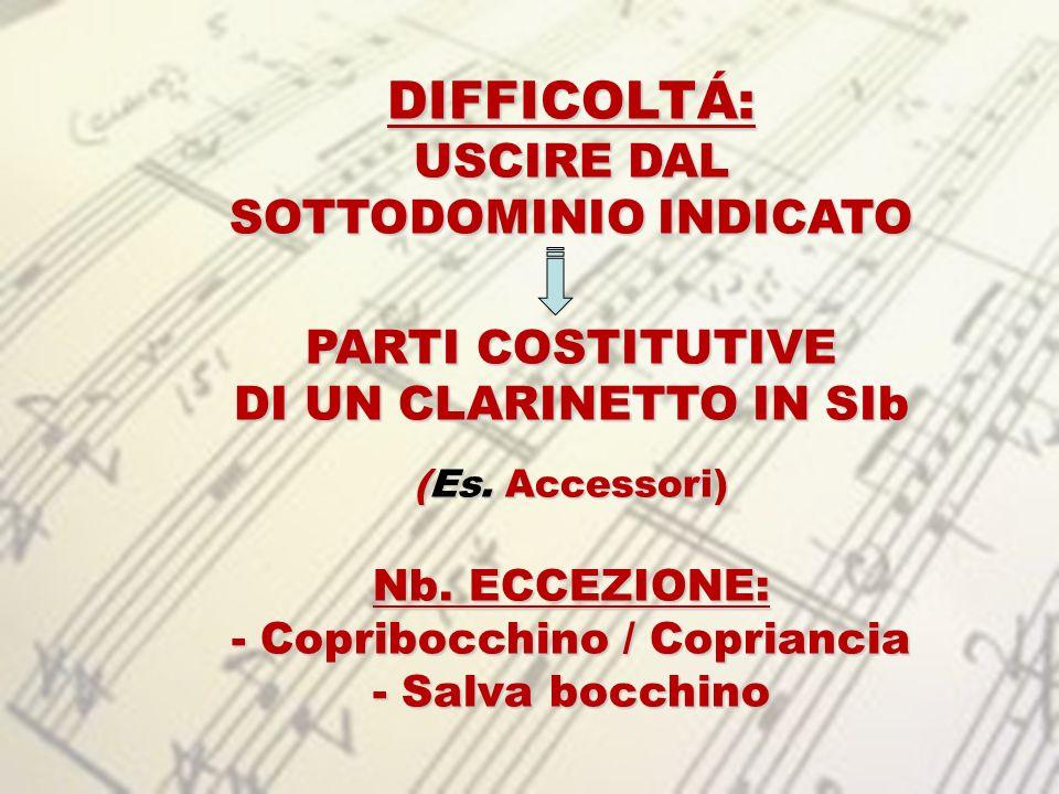 SOTTODOMINIO INDICATO Copribocchino / Copriancia