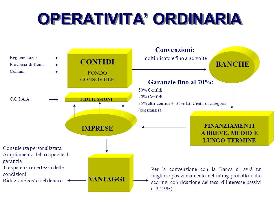 OPERATIVITA' ORDINARIA