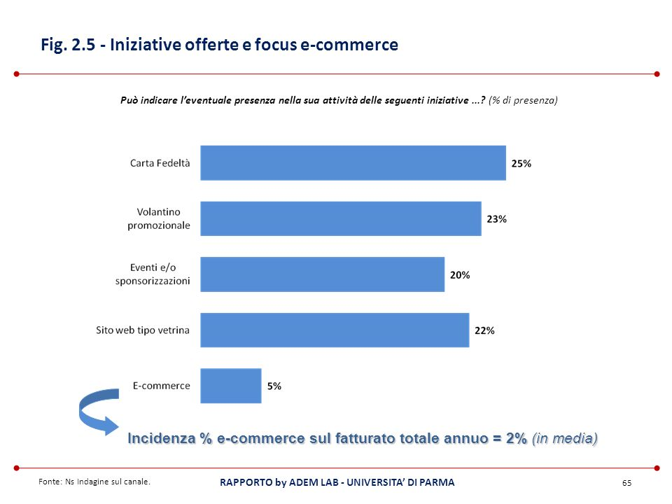 Fig. 2.5 - Iniziative offerte e focus e-commerce