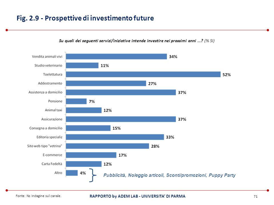 Fig. 2.9 - Prospettive di investimento future