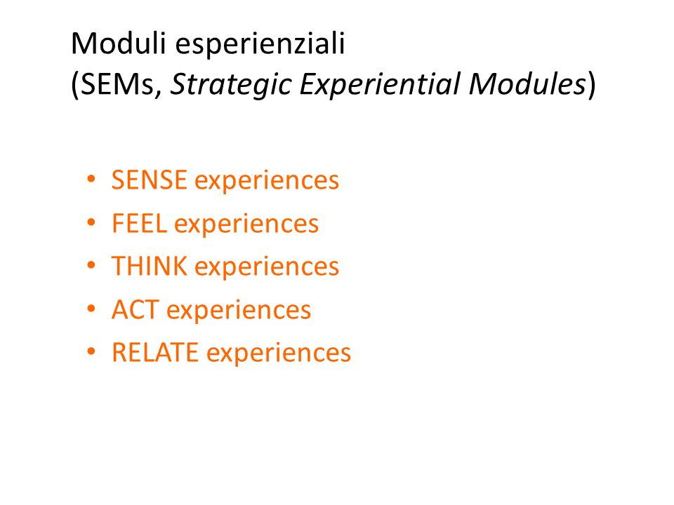 Moduli esperienziali (SEMs, Strategic Experiential Modules)
