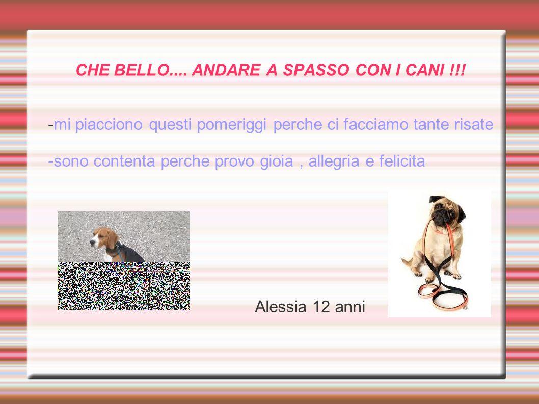 CHE BELLO.... ANDARE A SPASSO CON I CANI !!!