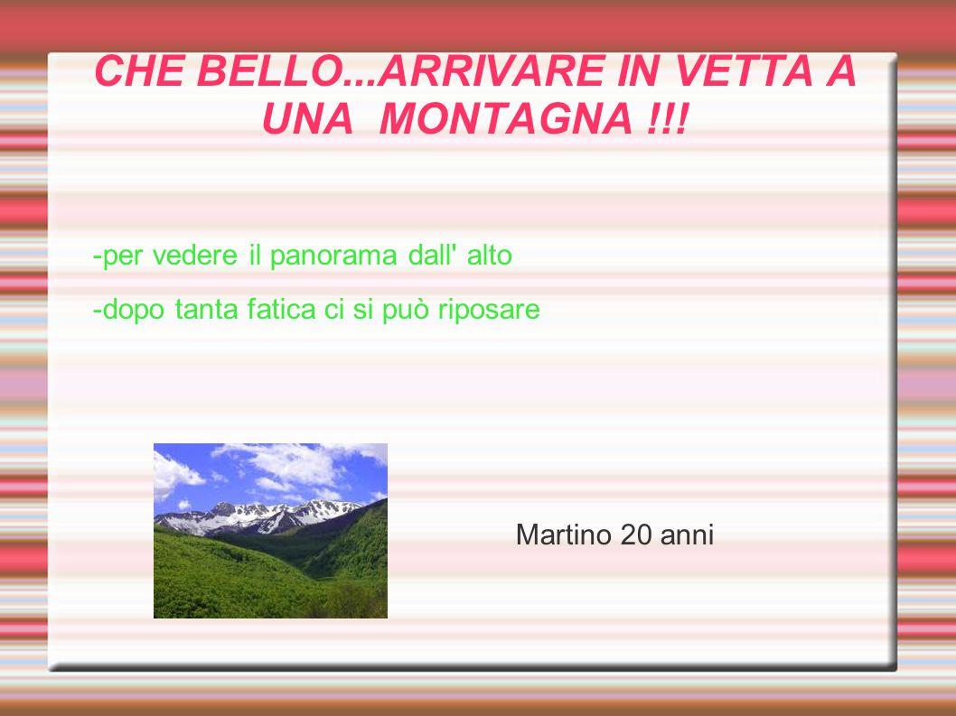 CHE BELLO...ARRIVARE IN VETTA A UNA MONTAGNA !!!