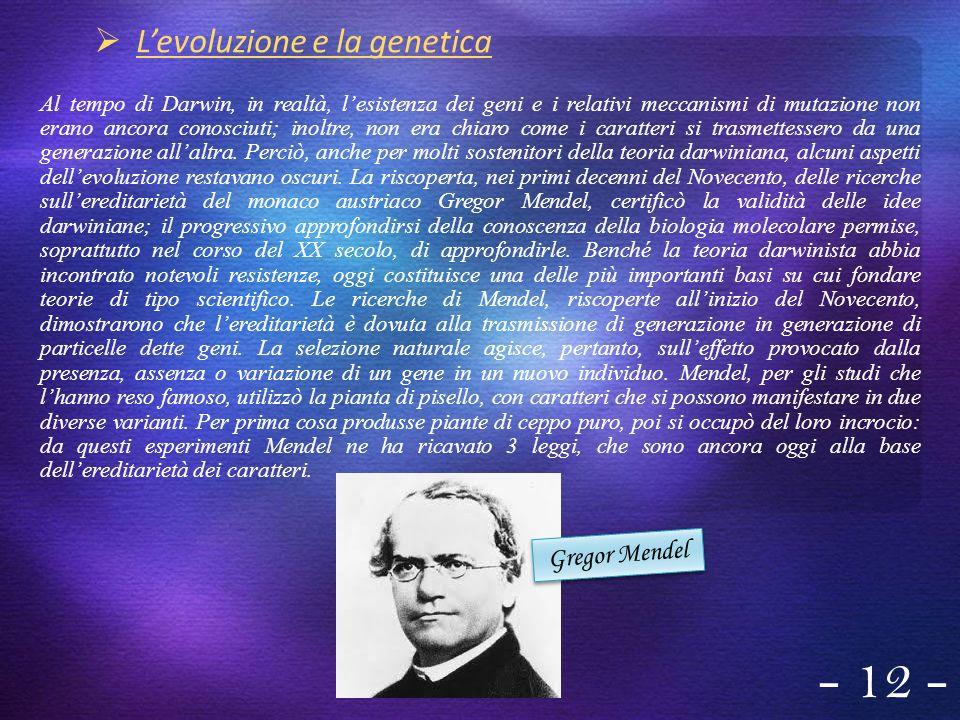 - 12 - L'evoluzione e la genetica Gregor Mendel
