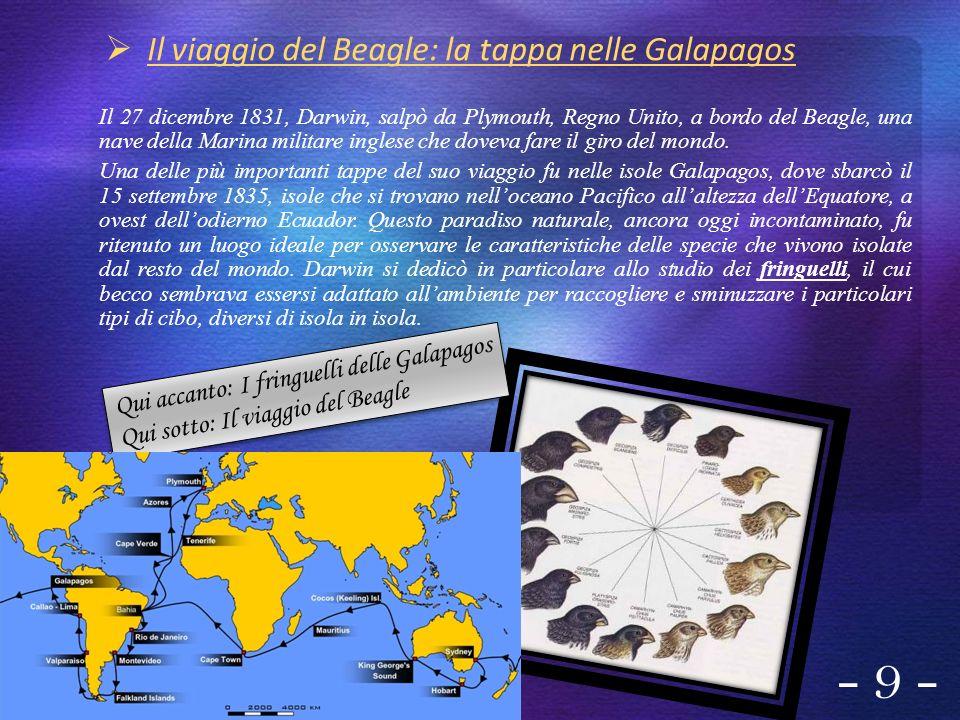 - 9 - Il viaggio del Beagle: la tappa nelle Galapagos