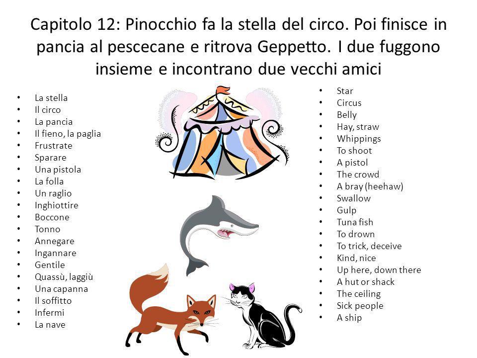 Capitolo 12: Pinocchio fa la stella del circo