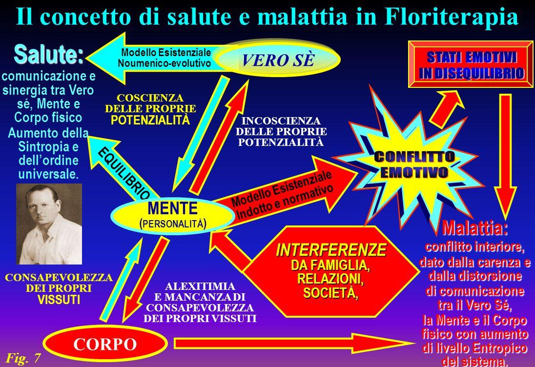 SINGOLI FIORI DI BACH SIGNIFICATIVI COUNSELING - CONTROLLO (2)