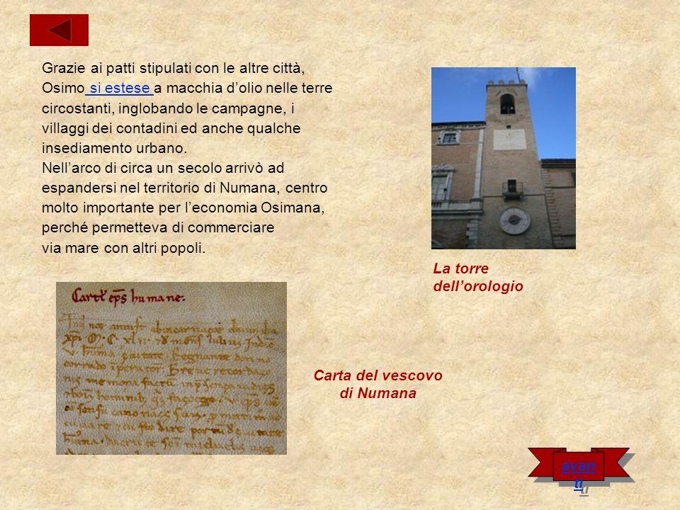Carta del vescovo di Numana