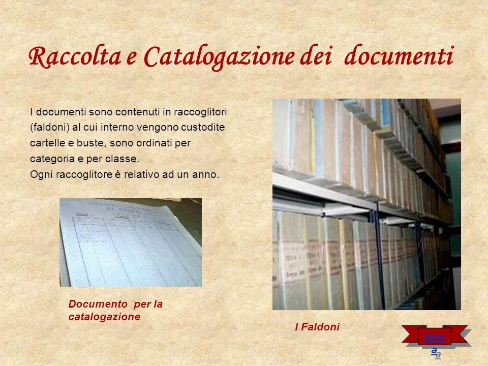 Raccolta e Catalogazione dei documenti