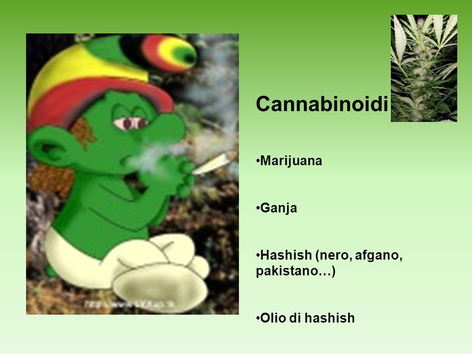 Cannabinoidi Marijuana Ganja Hashish (nero, afgano, pakistano…)