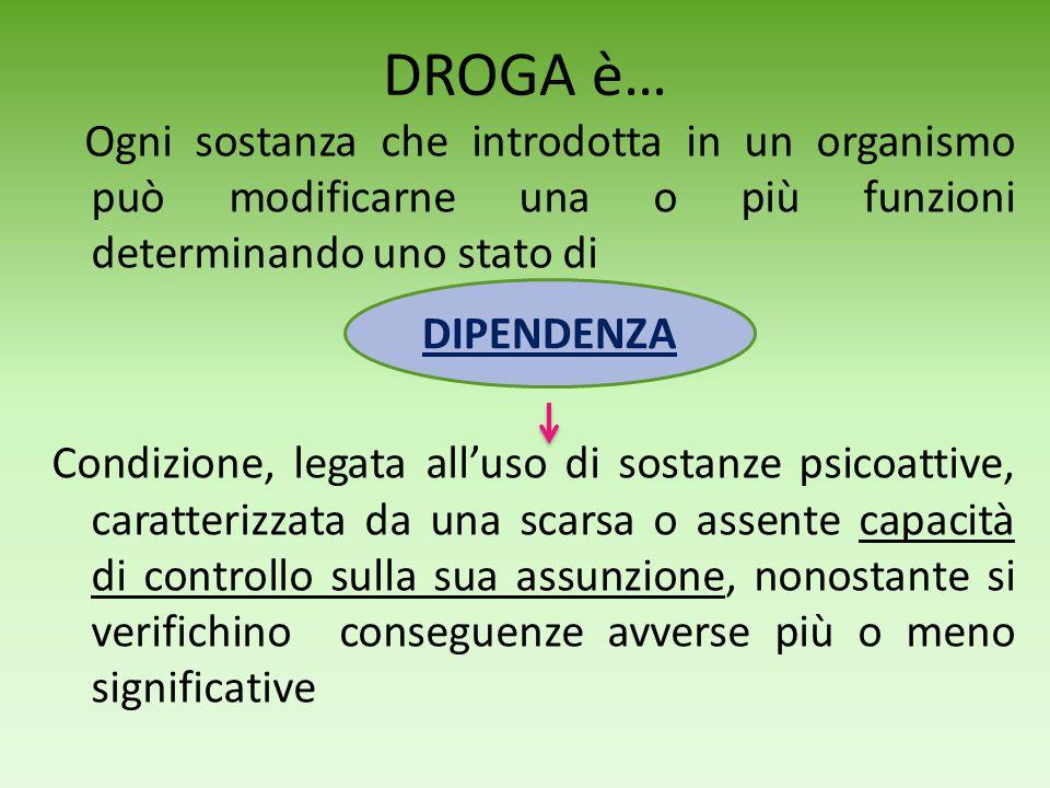 DROGA è…