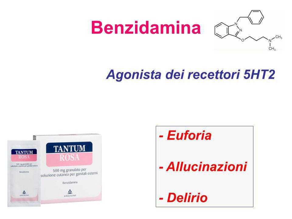 Benzidamina Agonista dei recettori 5HT2 - Euforia - Allucinazioni