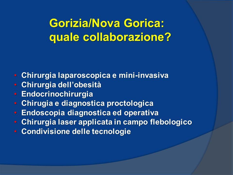 Gorizia/Nova Gorica: quale collaborazione