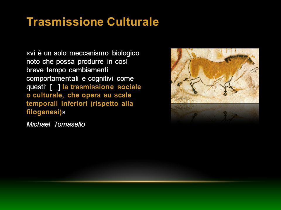 Trasmissione Culturale