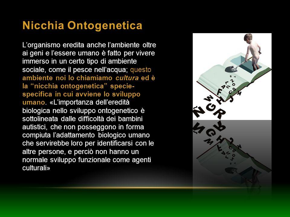 Nicchia Ontogenetica
