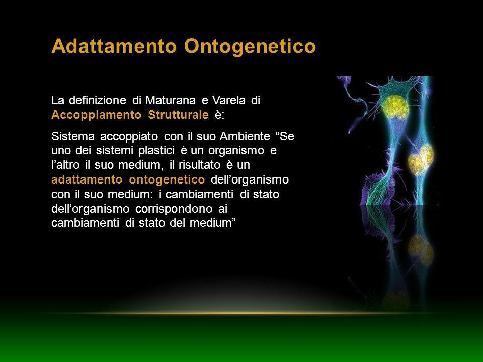 Adattamento Ontogenetico