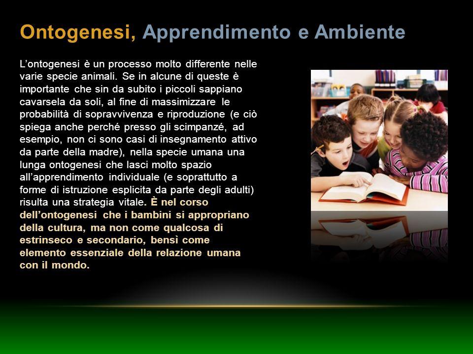 Ontogenesi, Apprendimento e Ambiente