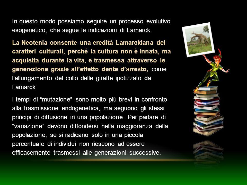 In questo modo possiamo seguire un processo evolutivo esogenetico, che segue le indicazioni di Lamarck.