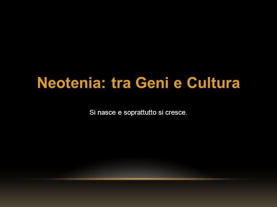 Neotenia: tra Geni e Cultura