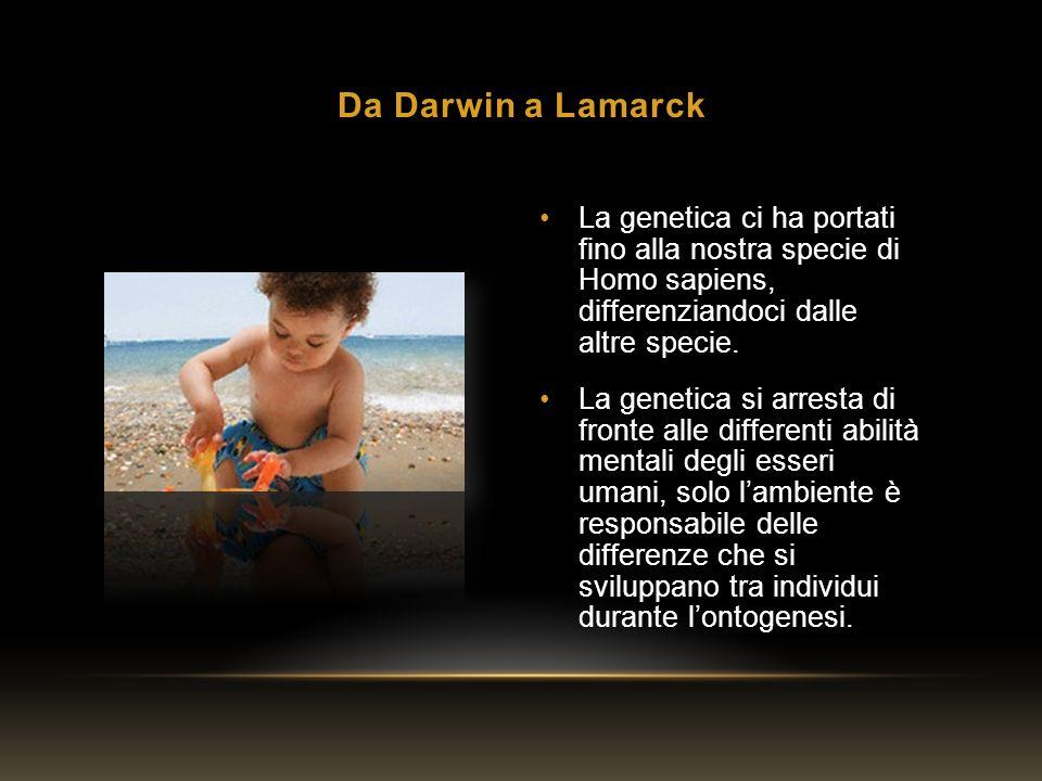 Da Darwin a Lamarck La genetica ci ha portati fino alla nostra specie di Homo sapiens, differenziandoci dalle altre specie.