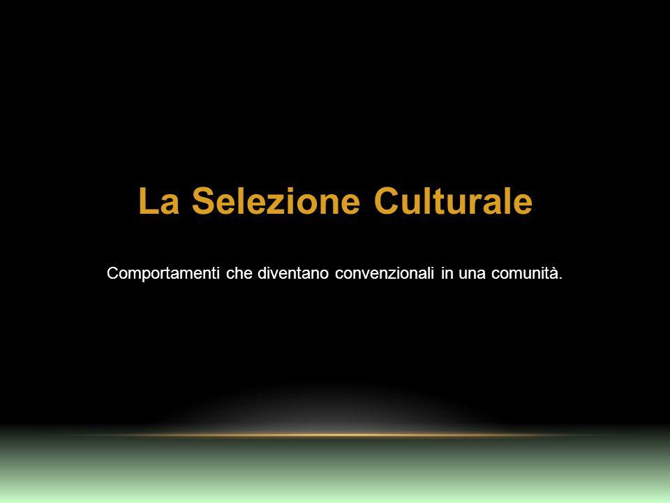 La Selezione Culturale