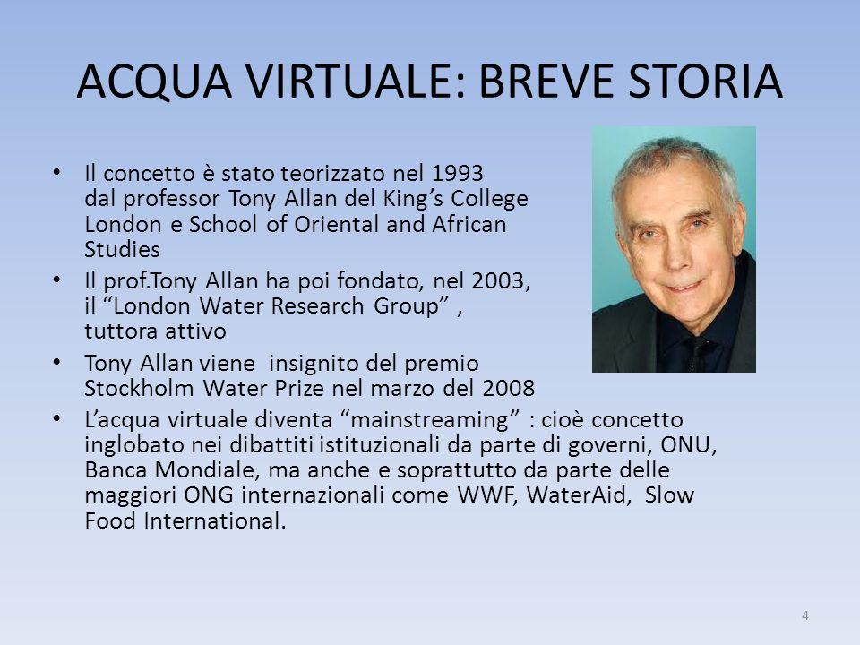 ACQUA VIRTUALE: BREVE STORIA